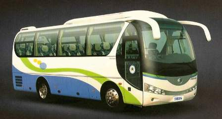 Specific Mini Bus with capacity of 30 passengers (middle bus)
