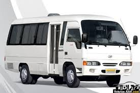 Specific Mini Bus with capacity of 17 passengers (Hyundai)